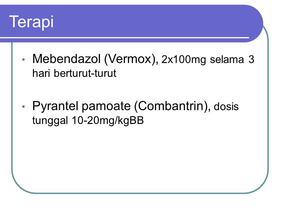 Terapi Mebendazol (Vermox), 2x100mg selama 3 hari berturut-turut