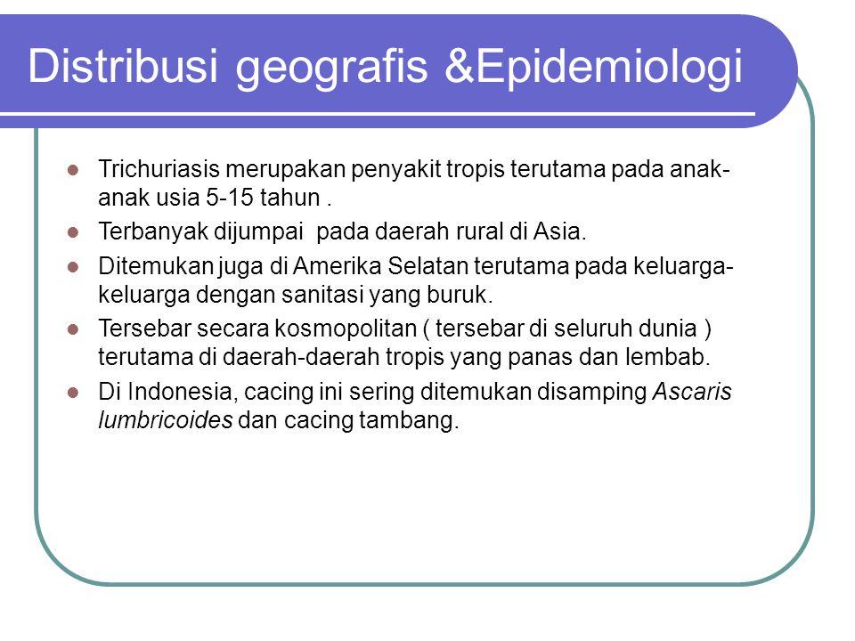 Distribusi geografis &Epidemiologi