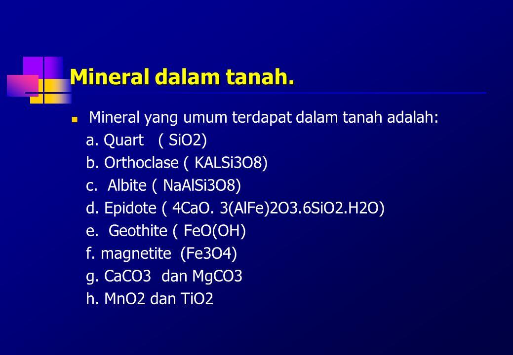Mineral dalam tanah. Mineral yang umum terdapat dalam tanah adalah: