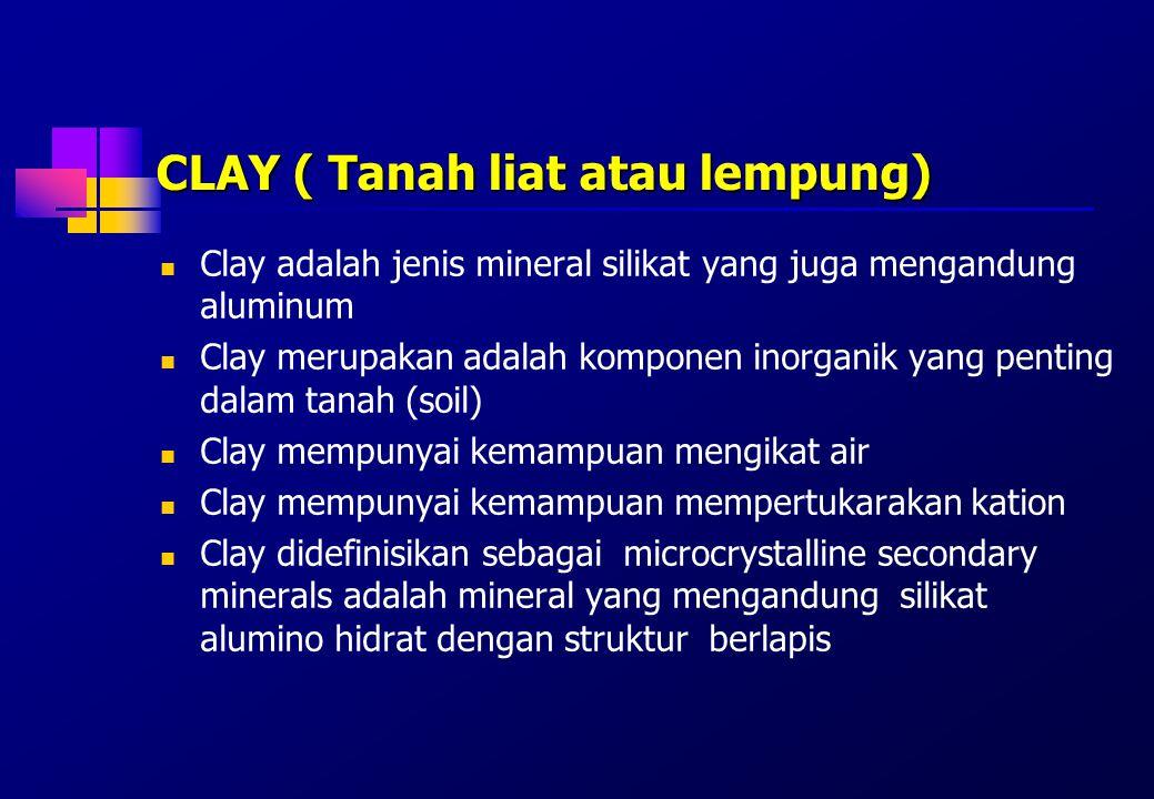 CLAY ( Tanah liat atau lempung)