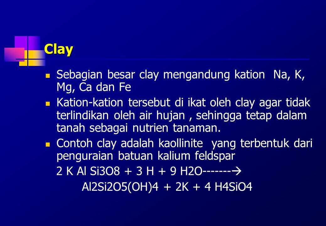 Clay Sebagian besar clay mengandung kation Na, K, Mg, Ca dan Fe