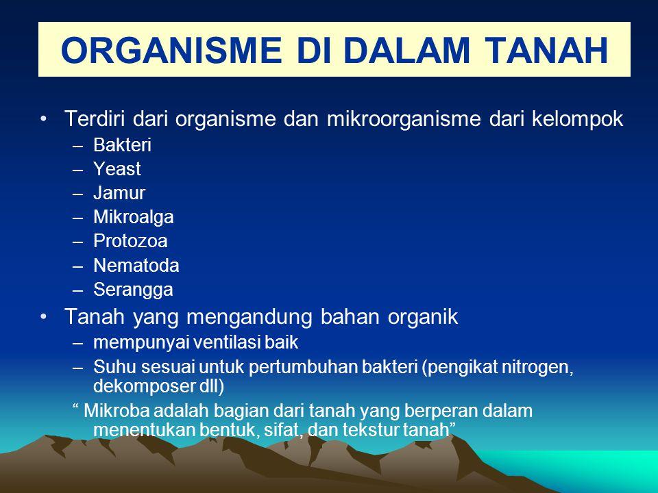 ORGANISME DI DALAM TANAH