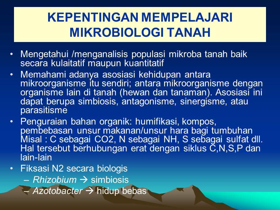 KEPENTINGAN MEMPELAJARI MIKROBIOLOGI TANAH