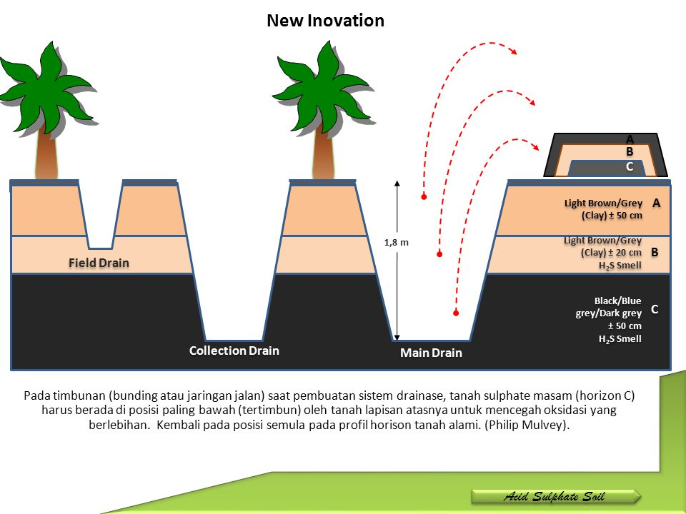 New Inovation Acid Sulphate Soil A B C A B Field Drain C