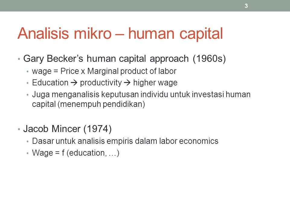 Analisis mikro – human capital