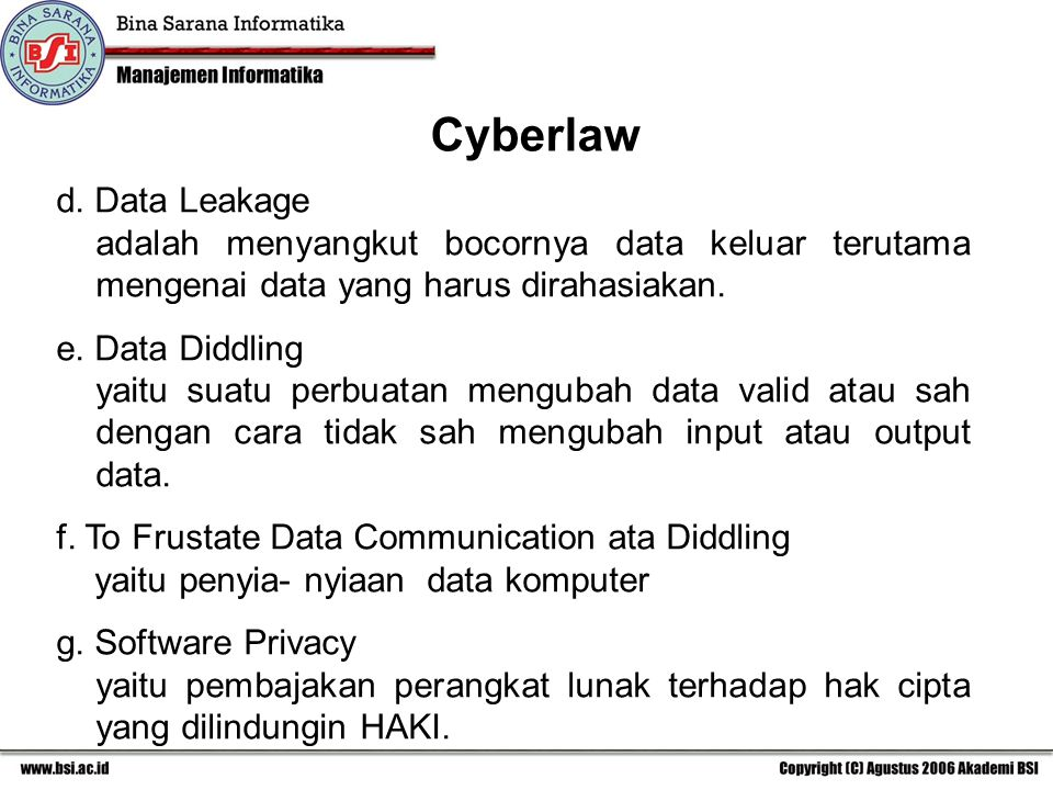 Cyberlaw d. Data Leakage