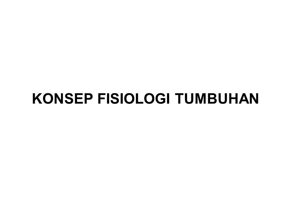 KONSEP FISIOLOGI TUMBUHAN