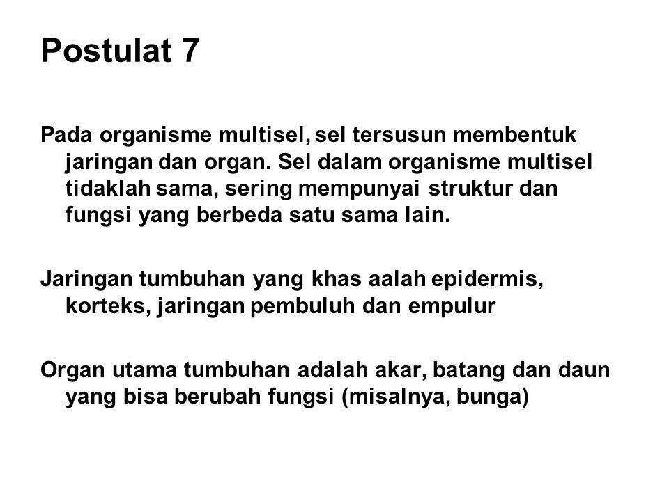 Postulat 7