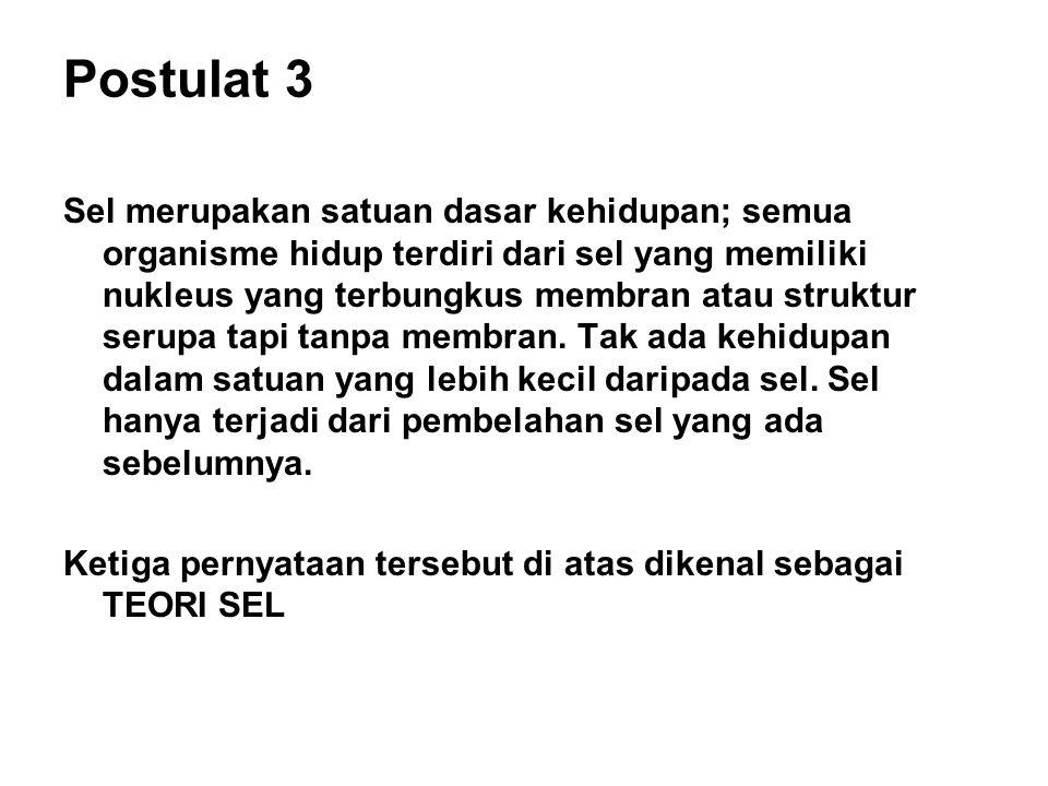 Postulat 3
