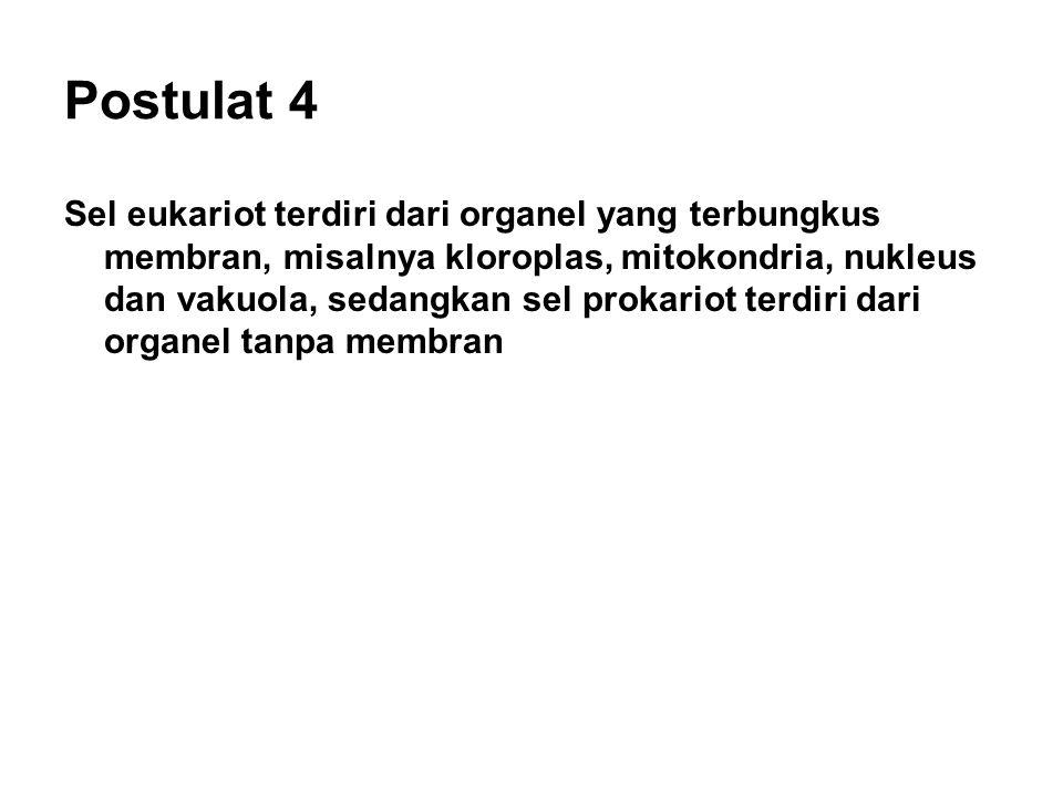 Postulat 4