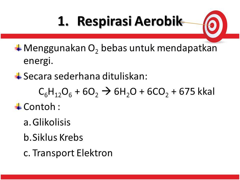 Respirasi Aerobik Menggunakan O2 bebas untuk mendapatkan energi.