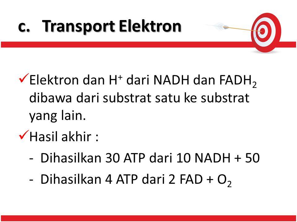 c. Transport Elektron Elektron dan H+ dari NADH dan FADH2 dibawa dari substrat satu ke substrat yang lain.