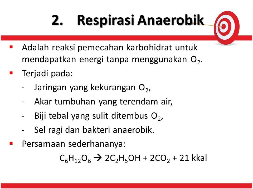 2. Respirasi Anaerobik Adalah reaksi pemecahan karbohidrat untuk mendapatkan energi tanpa menggunakan O2.