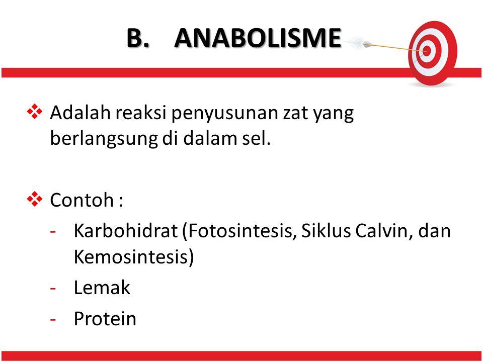 B. ANABOLISME Adalah reaksi penyusunan zat yang berlangsung di dalam sel. Contoh : Karbohidrat (Fotosintesis, Siklus Calvin, dan Kemosintesis)