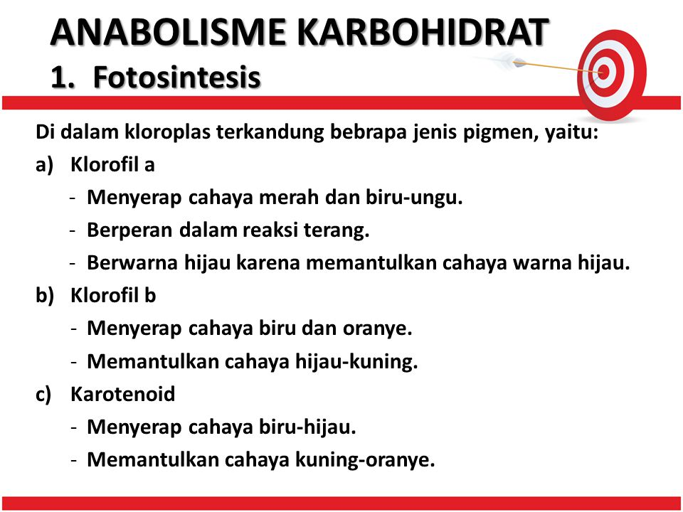 ANABOLISME KARBOHIDRAT 1. Fotosintesis