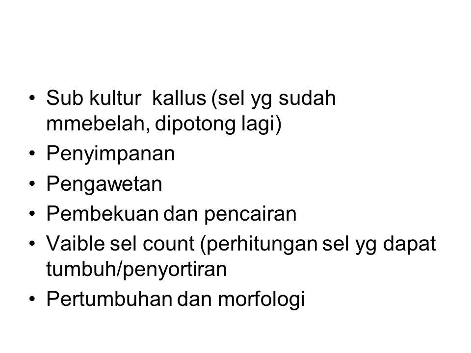 Sub kultur kallus (sel yg sudah mmebelah, dipotong lagi)