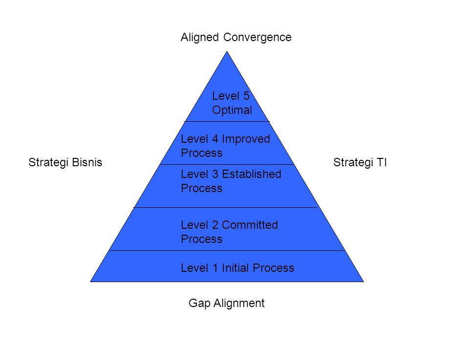 Aligned Convergence Level 5 Optimal. Level 4 Improved Process. Strategi Bisnis. Strategi TI. Level 3 Established Process.