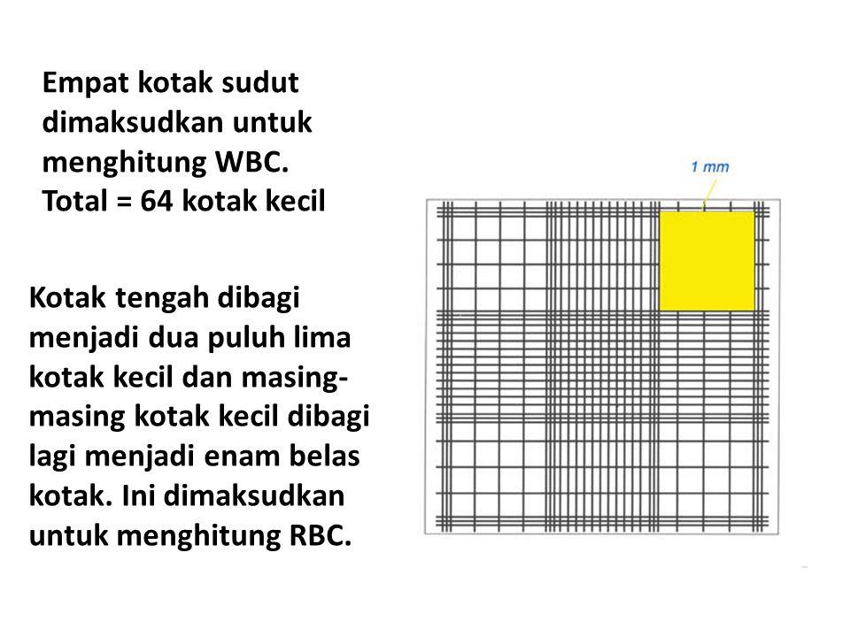 Empat kotak sudut dimaksudkan untuk menghitung WBC
