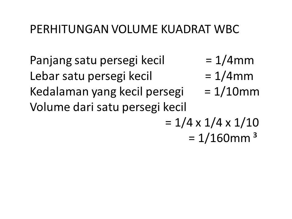 PERHITUNGAN VOLUME KUADRAT WBC