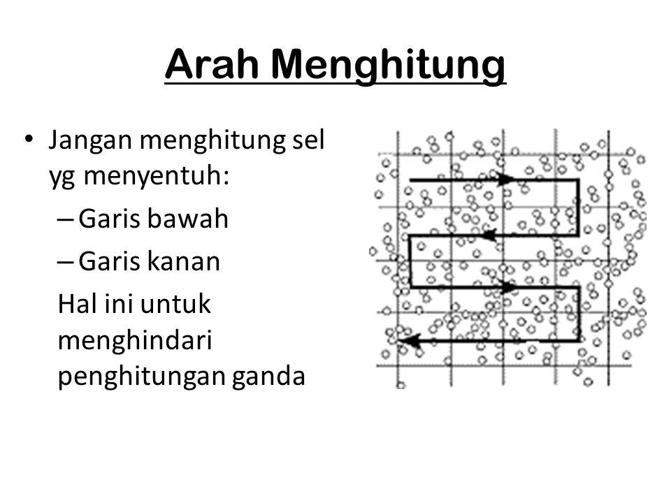 Arah Menghitung Jangan menghitung sel yg menyentuh: Garis bawah