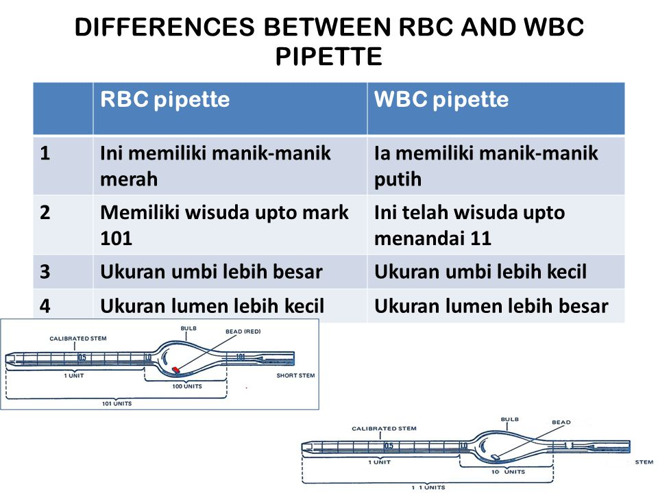 DIFFERENCES BETWEEN RBC AND WBC PIPETTE