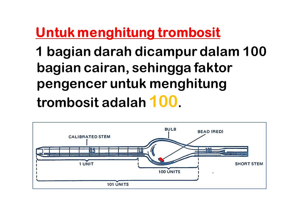 Untuk menghitung trombosit 1 bagian darah dicampur dalam 100 bagian cairan, sehingga faktor pengencer untuk menghitung trombosit adalah 100.