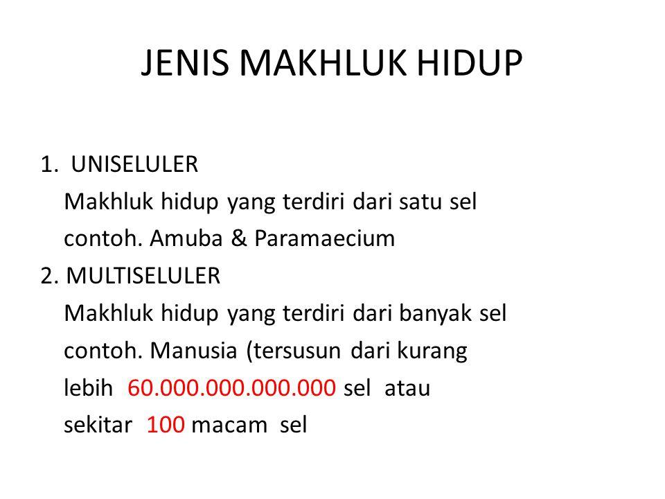 JENIS MAKHLUK HIDUP 1. UNISELULER