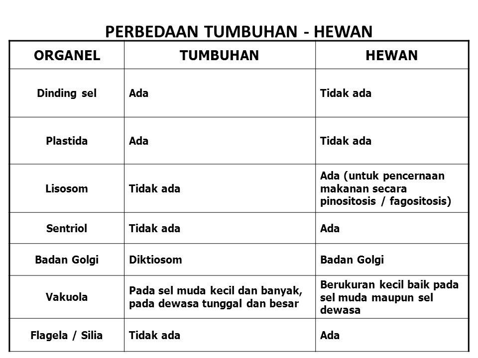 PERBEDAAN TUMBUHAN - HEWAN