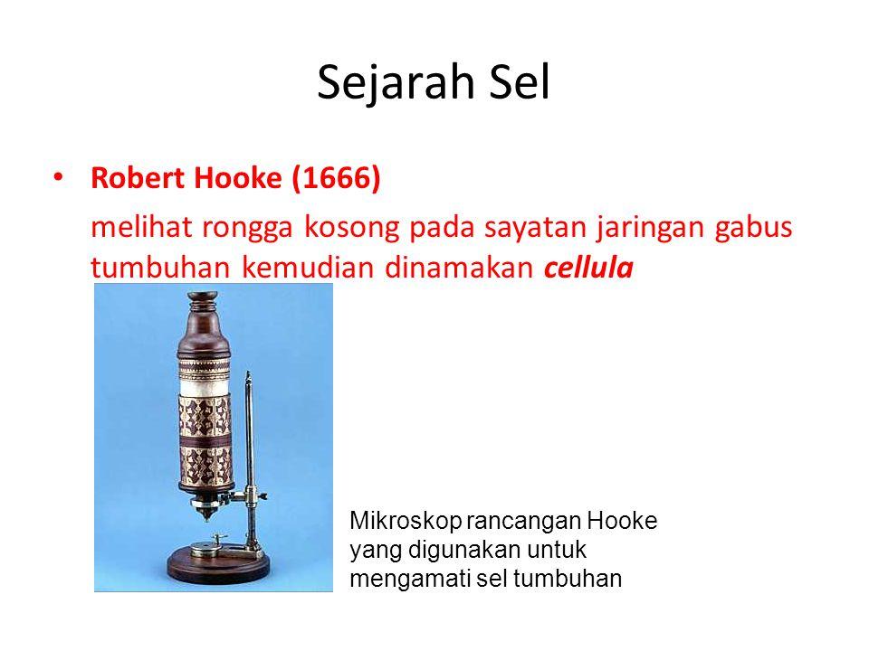 Sejarah Sel Robert Hooke (1666)