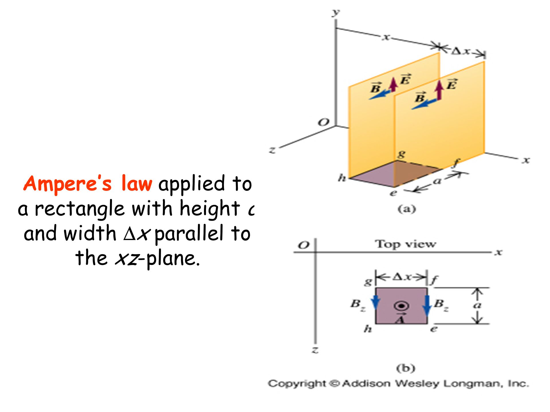 Ampere's law applied to a rectangle with height a and width Dx parallel to the xz-plane.