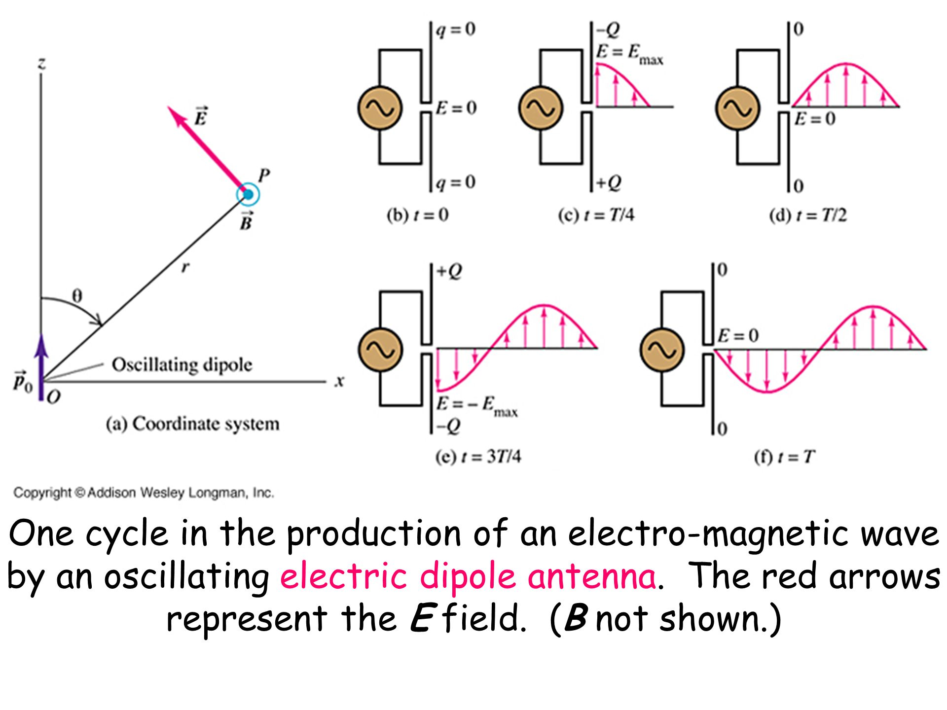 One cycle in the production of an electro-magnetic wave by an oscillating electric dipole antenna.