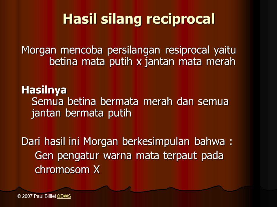 Hasil silang reciprocal