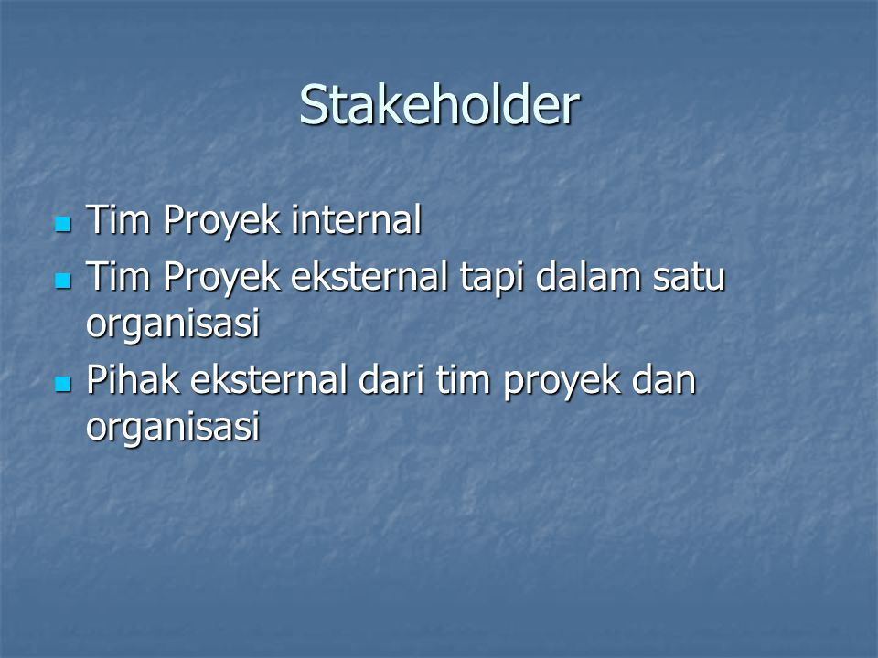 Stakeholder Tim Proyek internal