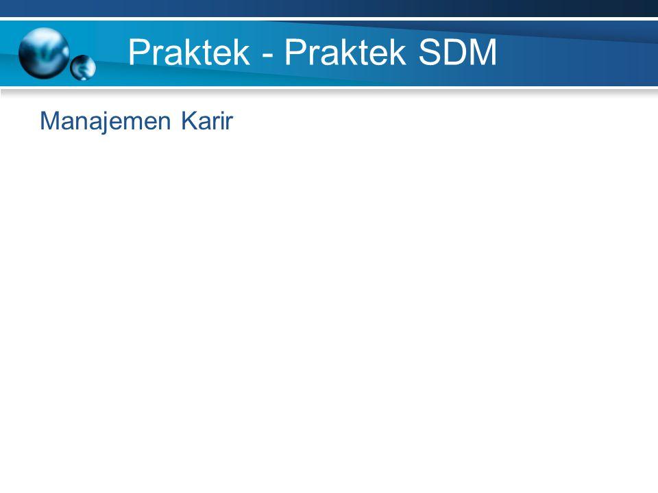 Praktek - Praktek SDM Manajemen Karir