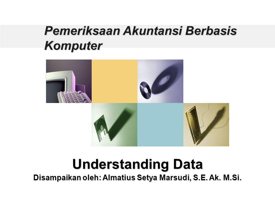 Pemeriksaan Akuntansi Berbasis Komputer
