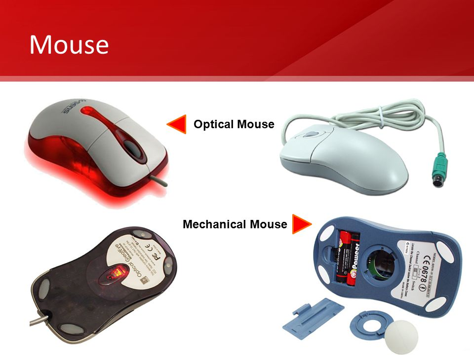 Mouse Optical Mouse Mechanical Mouse
