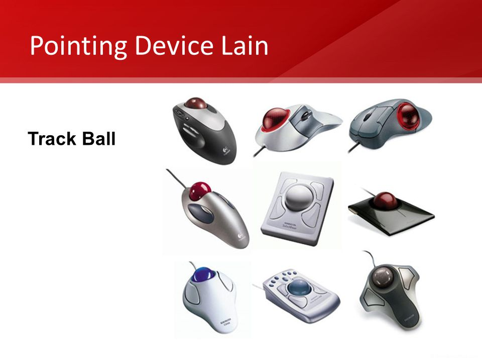 Pointing Device Lain Track Ball