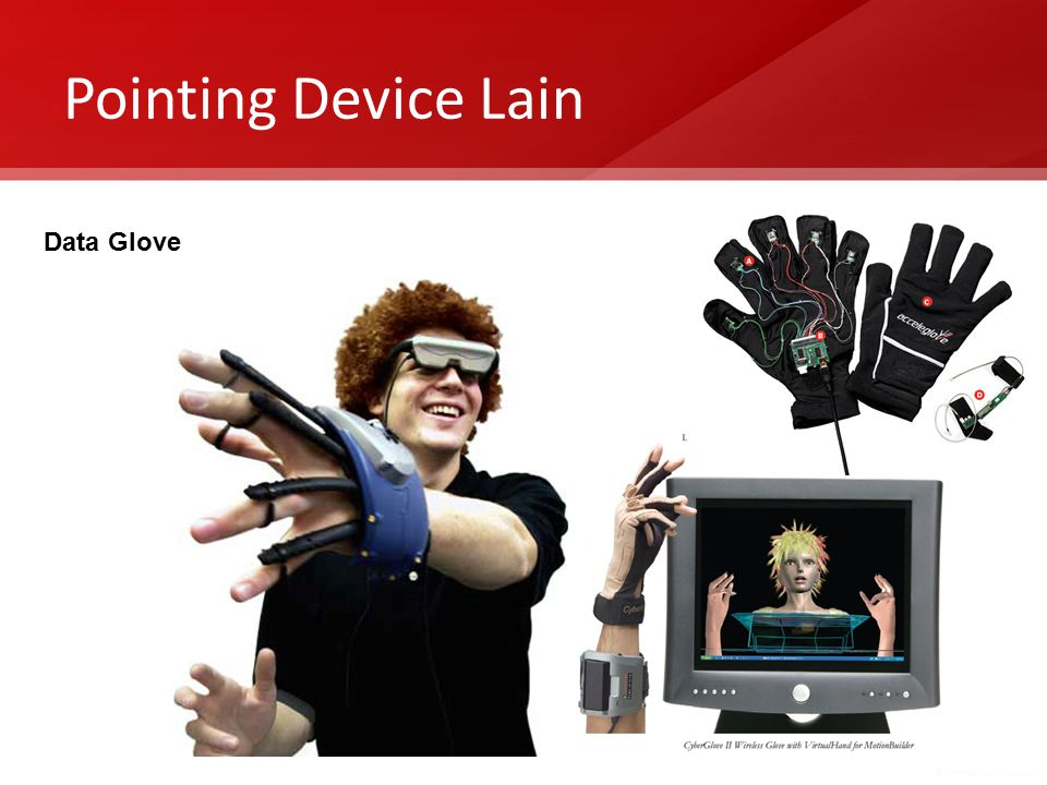 Pointing Device Lain Data Glove