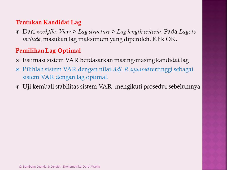Estimasi sistem VAR berdasarkan masing-masing kandidat lag