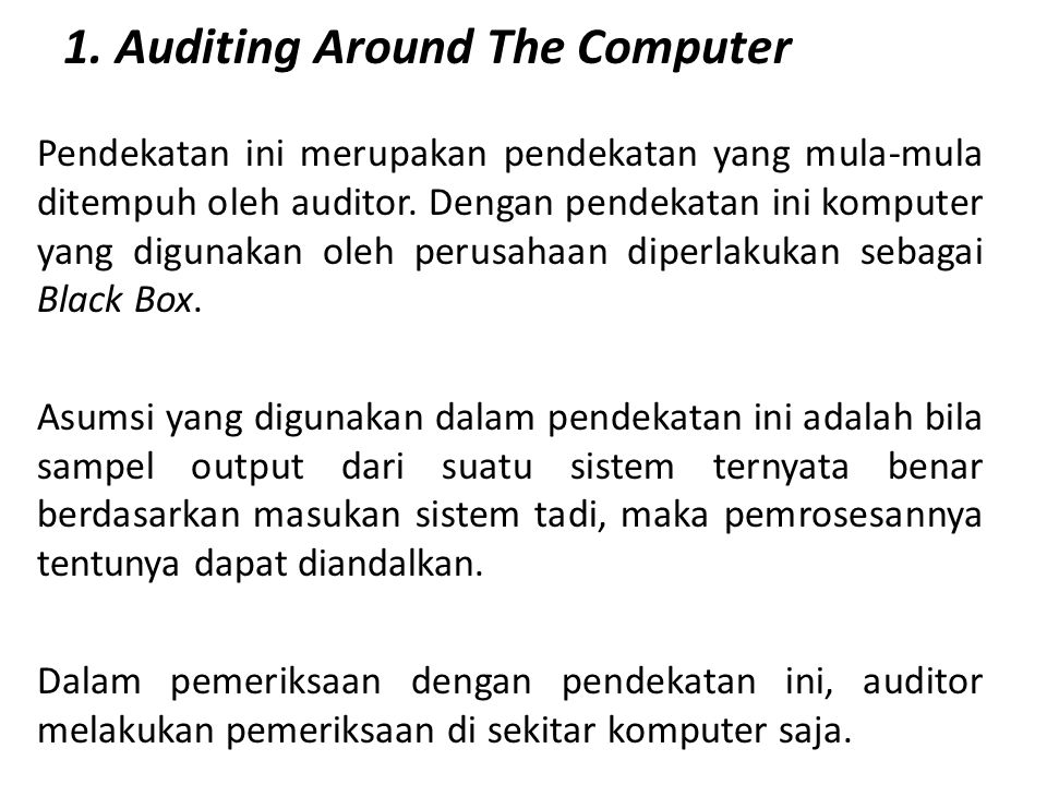 1. Auditing Around The Computer
