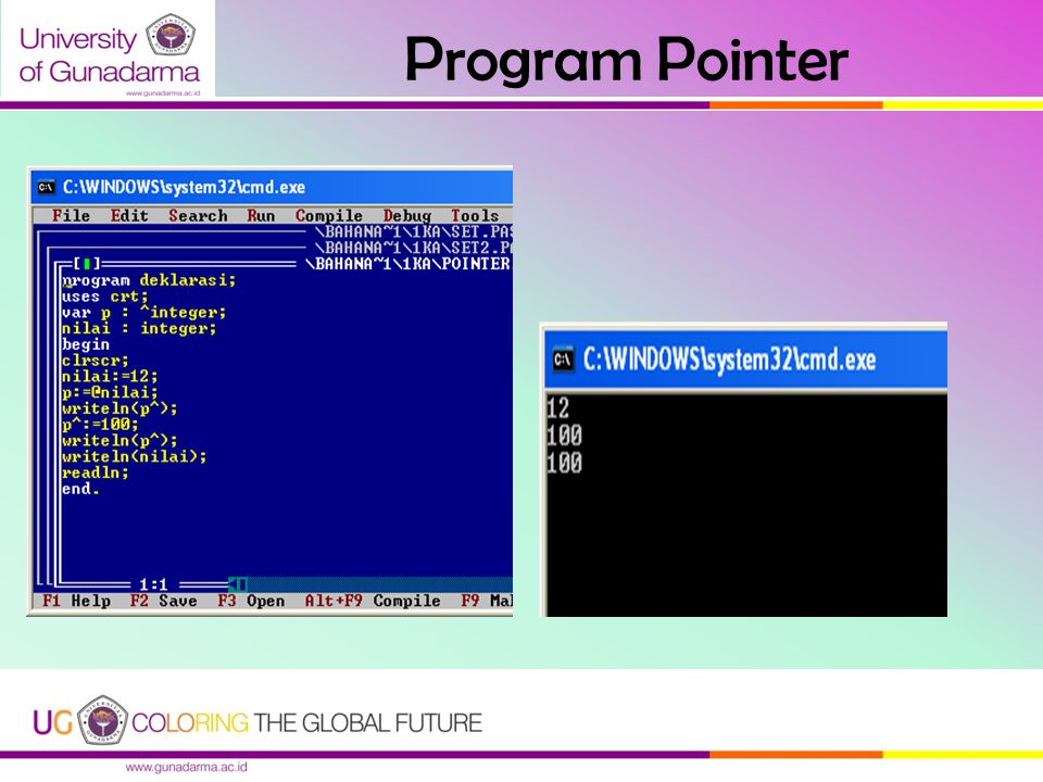 Program Pointer