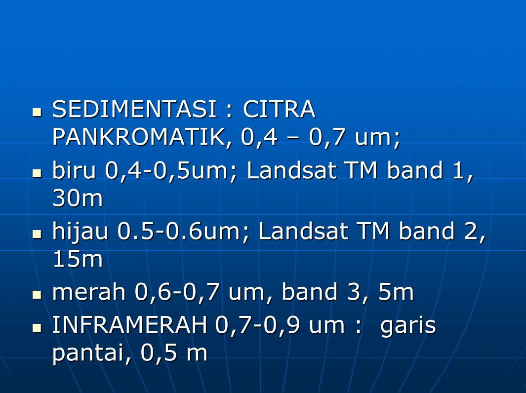 SEDIMENTASI : CITRA PANKROMATIK, 0,4 – 0,7 um;