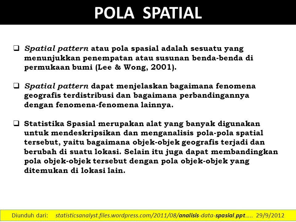 POLA SPATIAL