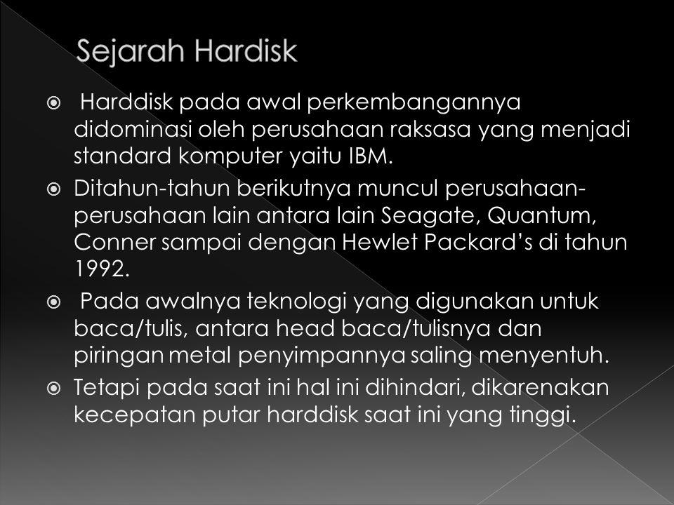 Sejarah Hardisk Harddisk pada awal perkembangannya didominasi oleh perusahaan raksasa yang menjadi standard komputer yaitu IBM.