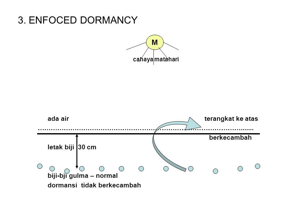 3. ENFOCED DORMANCY M ada air terangkat ke atas