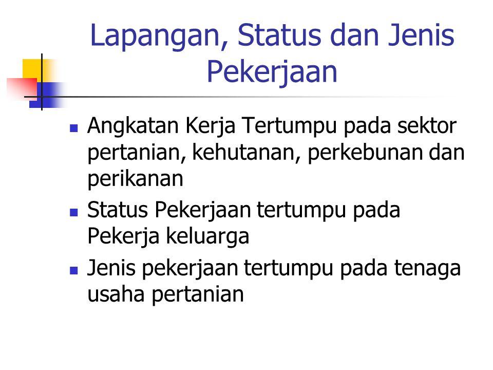 Lapangan, Status dan Jenis Pekerjaan