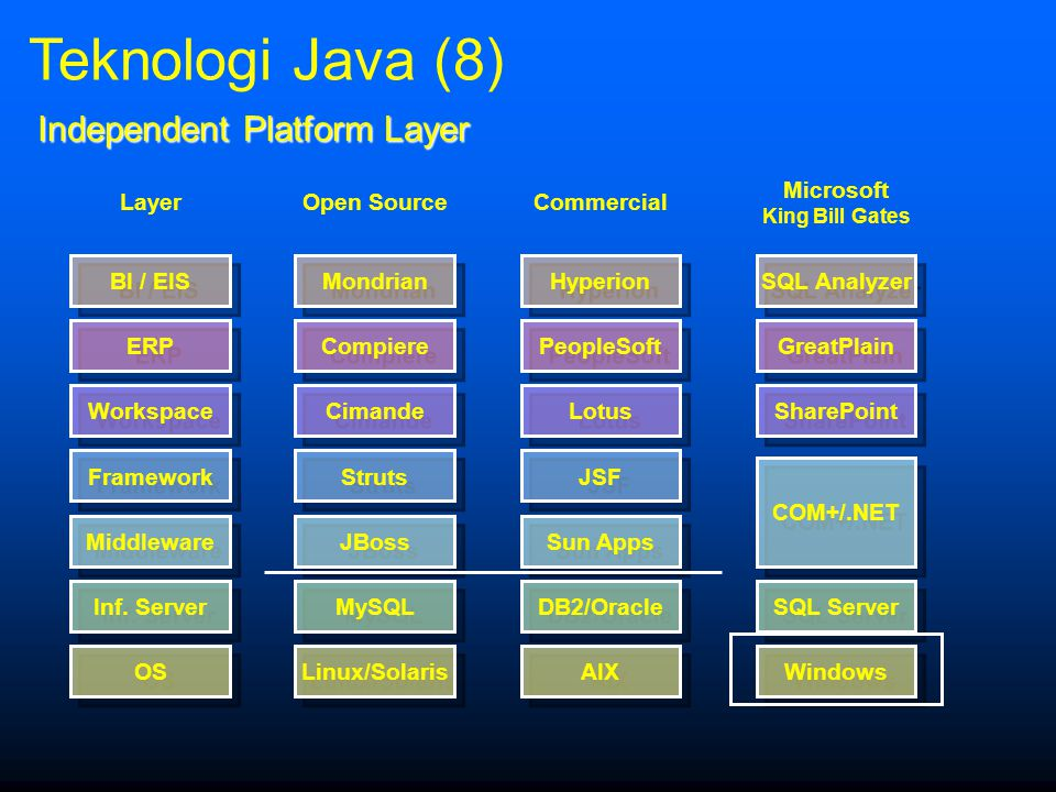 Independent Platform Layer