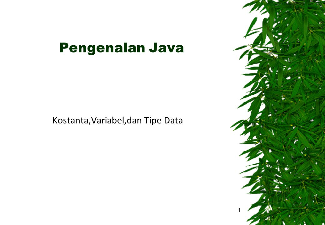 Kostanta,Variabel,dan Tipe Data