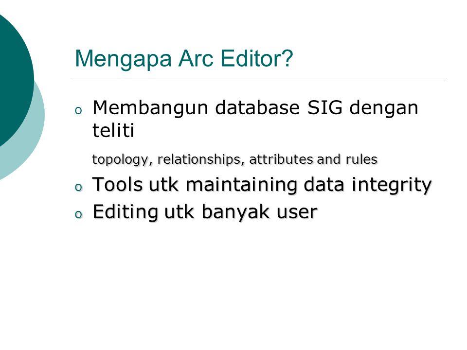 Mengapa Arc Editor Membangun database SIG dengan teliti