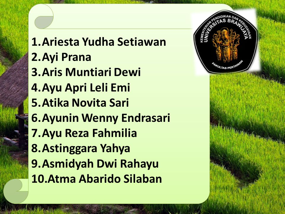 Ariesta Yudha Setiawan